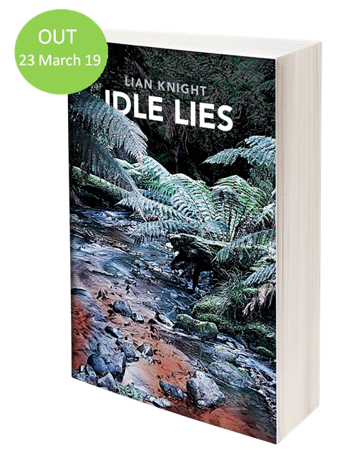 Idle lies cover